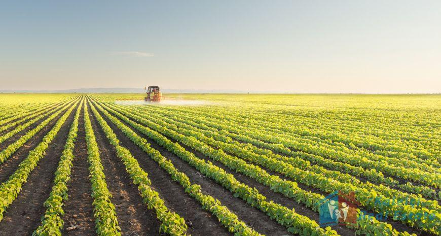 agricultural land and greenhouse land for sale